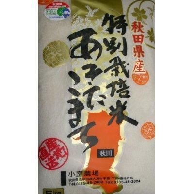 画像1: 減農薬減化学肥料栽培米 白米5kg