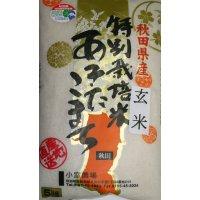 減農薬減化学肥料栽培米 玄米5kg
