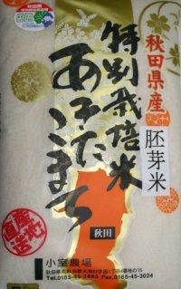減農薬減化学肥料栽培米 胚芽米5kg