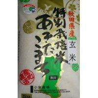 無農薬無化学肥料栽培米 玄米5kg