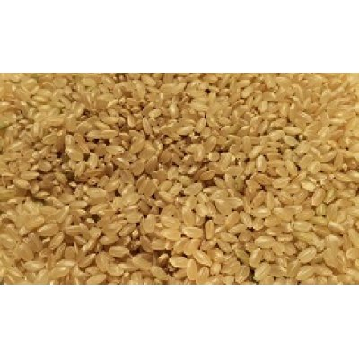 画像2: 無農薬無化学肥料栽培米 玄米2kg